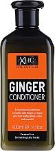 """Parfüm, Parfüméria, kozmetikum Szulfátmentes hajkondicionáló """"Gyömbér"""" - Xpel Marketing Ltd Ginger Conditioner"""