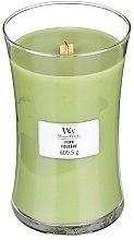 Parfüm, Parfüméria, kozmetikum Illatgyertya pohárban - WoodWick Hourglass Candle Fern