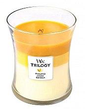 Parfüm, Parfüméria, kozmetikum Illatgyertya pohárban - WoodWick Hourglass Trilogy Candle Fruits of Summer