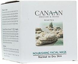 Parfüm, Parfüméria, kozmetikum Tápláló maszk normál és száraz bőrre - Canaan Minerals & Herbs Nourishing Facial Mask Normal to Dry Skin