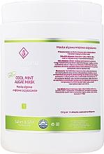 Parfüm, Parfüméria, kozmetikum Alginát arcmaszk mentával - Charmine Rose Cool Mint Algae Mask