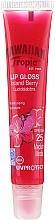 Parfüm, Parfüméria, kozmetikum Napvédő ajakbalzsam - Hawaiian Tropic Gloss Lip Gloss Island Berry SPF 25