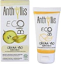 Parfüm, Parfüméria, kozmetikum Hidratáló arckrém - Anthyllis Moisturizing Face Cream
