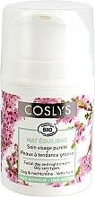 Parfüm, Parfüméria, kozmetikum Nappali krém zsíros bőrre - Coslys Day Cream Oily Skin Types