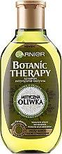 Parfüm, Parfüméria, kozmetikum Sampon - Garnier Botanic Therapy Olive