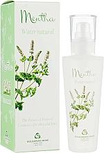Parfüm, Parfüméria, kozmetikum Menta hidrolátum arcspray - Bulgarian Rose Aromatherapy Hydrolate Mint Spray