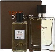 Parfüm, Parfüméria, kozmetikum Hermes Terre dHermes - Szett (edt/100ml + sh/g/80ml)